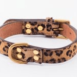 british made pet accessories category image showing an animal print dog collar by iwoof