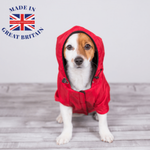 dog food and accessories, dog in a red coat, made in great britain