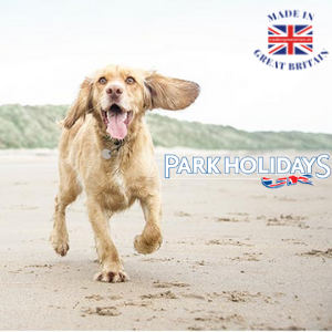 dog running on a beach, park holidays uk staycations