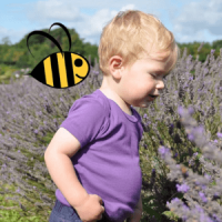 beeboobuzz, british made children's clothing, toddler wearing purple t shirt in lavender field with bumble bee animation,