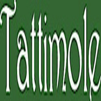 british made bags and accessories category image showing tattimole white text on green square background