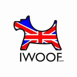 iwoof, union jack, designer dog collars and leads, madein great britain, british made pet accessories, pet accessories uk, made in great britain